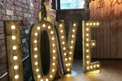 Rustic LOVE light up letters