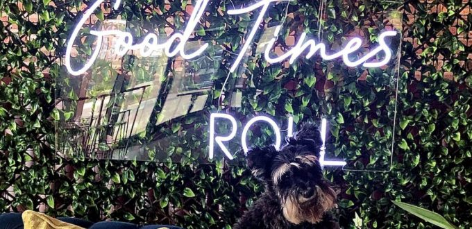 Let The Good Times Roll Neon Signage for Hire